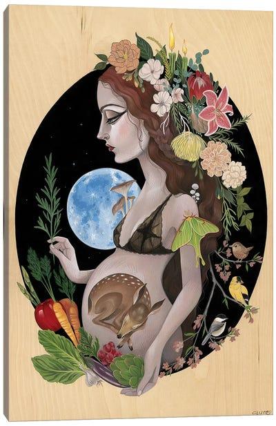 Origin Canvas Art Print