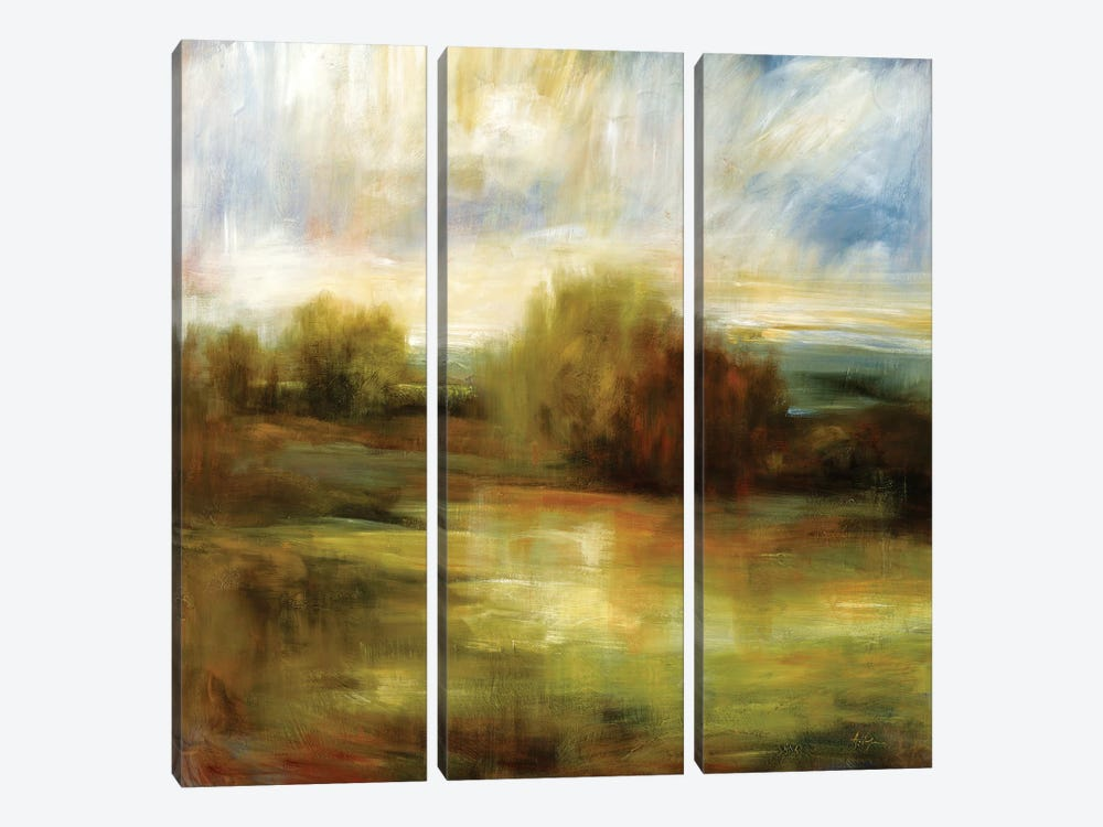 John's Field by Simon Addyman 3-piece Canvas Wall Art