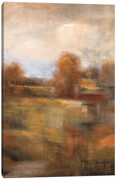 Painter's Land Canvas Art Print