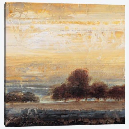 Restoration II Canvas Print #SAD19} by Simon Addyman Canvas Art Print