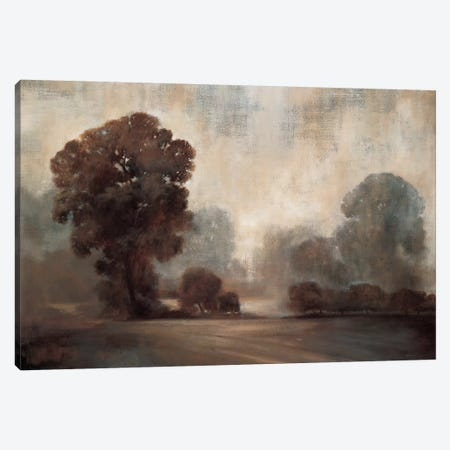 Sepia Canvas Print #SAD20} by Simon Addyman Canvas Art
