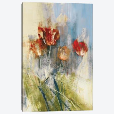 Tulips Canvas Print #SAD30} by Simon Addyman Art Print