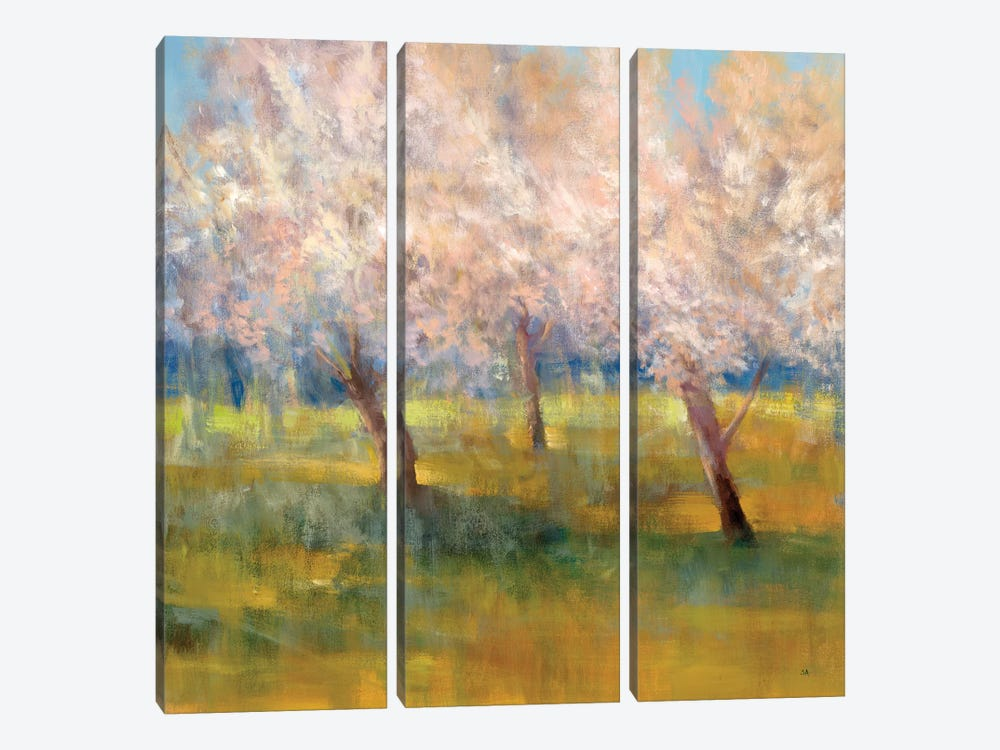 Cherry Blossoms by Simon Addyman 3-piece Canvas Print