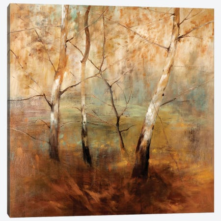 Early Morning Canvas Print #SAD6} by Simon Addyman Canvas Art