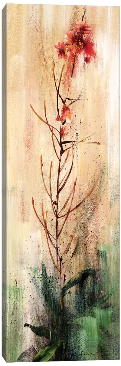Fireweed I Canvas Art Print