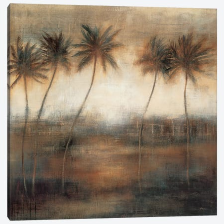 Five Palms Canvas Print #SAD9} by Simon Addyman Art Print