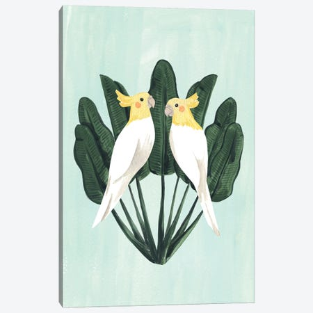 Cockatiels Canvas Print #SAF162} by Sabina Fenn Canvas Art Print