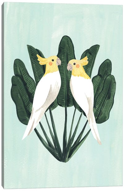 Cockatiels Canvas Art Print