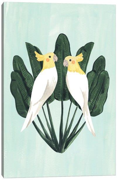 Cockatiels Canvas Art Print