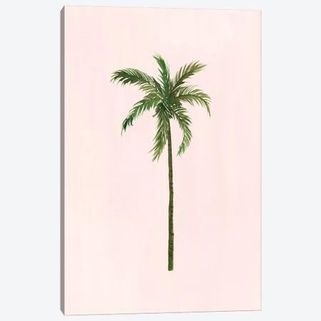 Palm Tree Canvas Print #SAF175} by Sabina Fenn Art Print