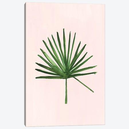 Windmill Palm Canvas Print #SAF176} by Sabina Fenn Canvas Print
