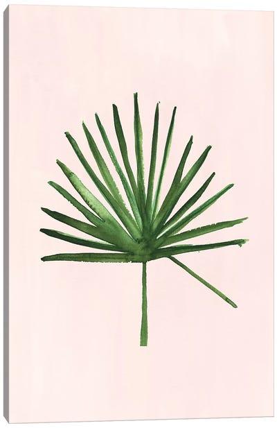 Windmill Palm Canvas Art Print