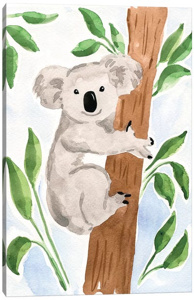 Koala Bear Canvas Art Print