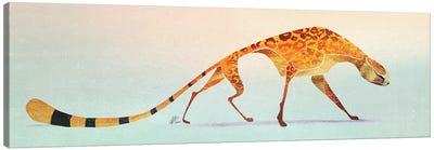 Cheetah IV Canvas Art Print
