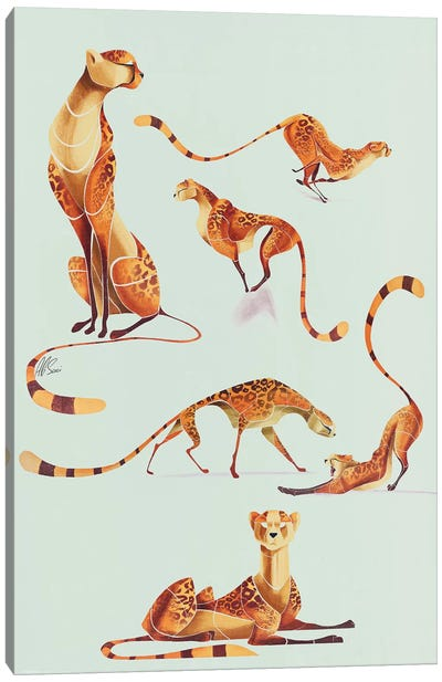 Cheetah Poses Canvas Art Print