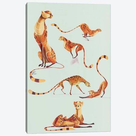 Cheetah Poses Canvas Print #SAI13} by SAEIART Canvas Wall Art