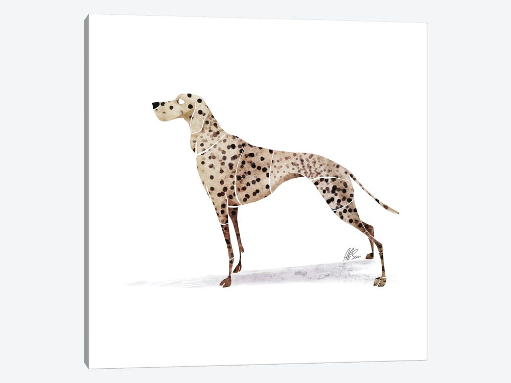 Dalmatian by SAEIART 1-piece Canvas Artwork