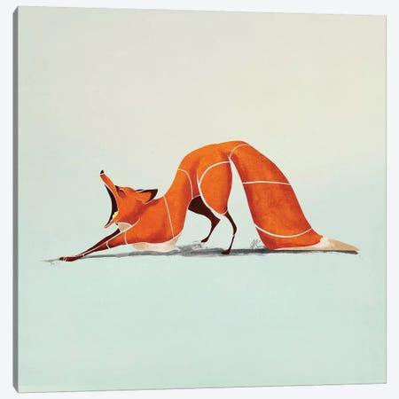 Fox III 3-Piece Canvas #SAI23} by SAEIART Canvas Print