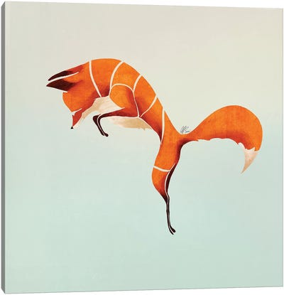 Fox IV Canvas Art Print