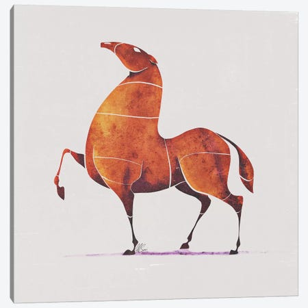Horse II Canvas Print #SAI29} by SAEIART Canvas Art Print