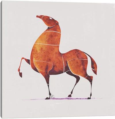 Horse II Canvas Art Print