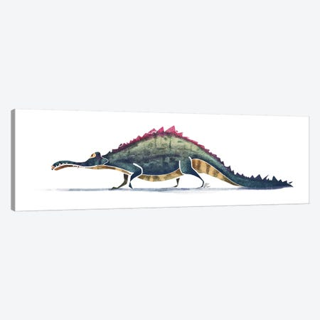 Alligator Canvas Print #SAI2} by SAEIART Canvas Art
