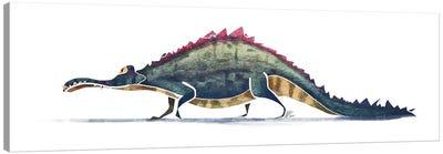 Alligator Canvas Art Print