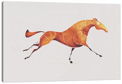 Horse V Canvas Art Print