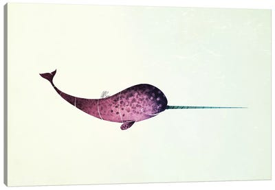 Narwhal Canvas Art Print
