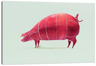 Pig Canvas Art Print