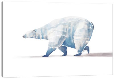 Polar Bear Canvas Art Print