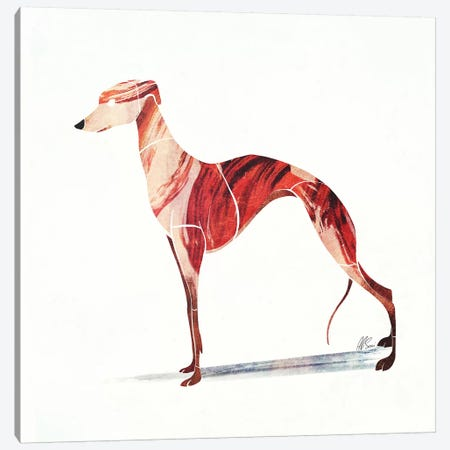 Whippet Canvas Print #SAI54} by SAEIART Canvas Art Print