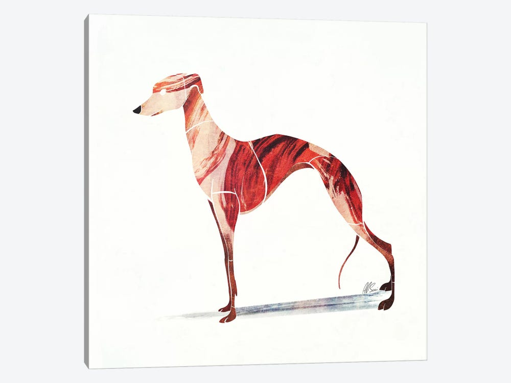 Whippet by SAEIART 1-piece Canvas Print