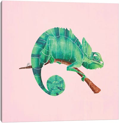 Chameleon Canvas Art Print