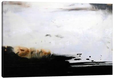 Frequency II Canvas Art Print