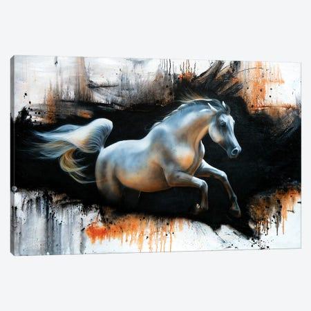 Harmony Canvas Print #SAN111} by Sandi Baker Canvas Art Print