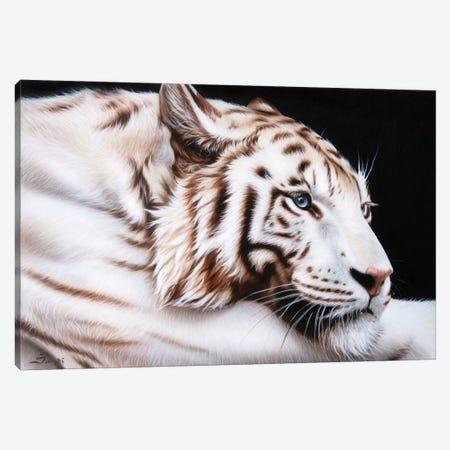 Susans Tiger Canvas Print #SAN116} by Sandi Baker Canvas Artwork