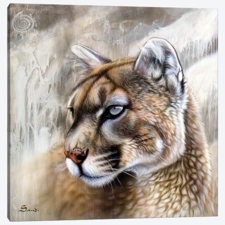 Catamount Canvas Print #SAN11} by Sandi Baker Canvas Print