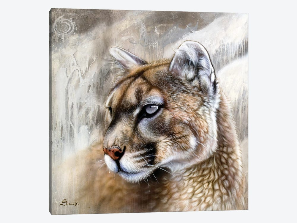 Catamount by Sandi Baker 1-piece Canvas Art Print