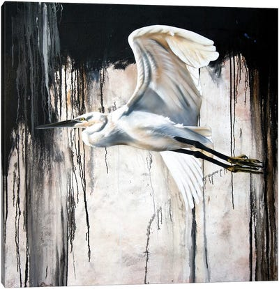 Abstract Egret Canvas Art Print