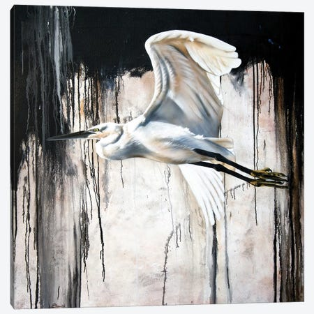 Abstract Egret Canvas Print #SAN1} by Sandi Baker Canvas Print