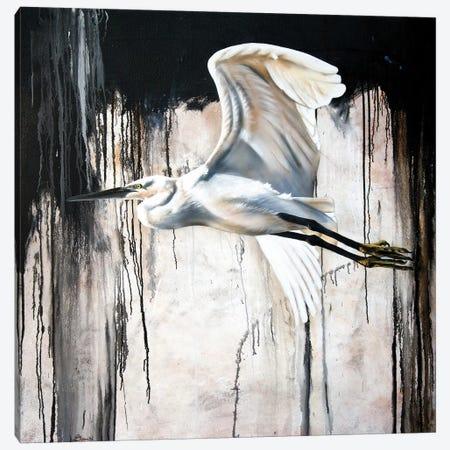 Abstract Egret Canvas Print #SAN1} by Sandi Baker Canvas Print