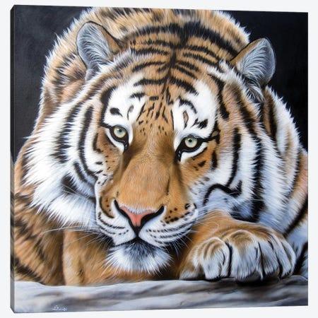 Daydream Canvas Print #SAN33} by Sandi Baker Art Print