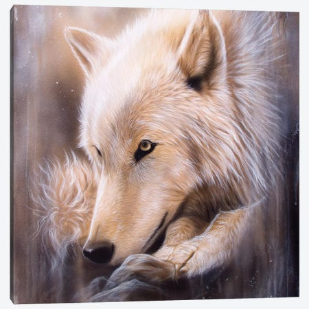 Dreamscape Wolf I Canvas Print #SAN37} by Sandi Baker Canvas Artwork