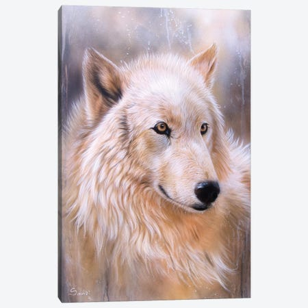 Dreamscape Wolf II 3-Piece Canvas #SAN38} by Sandi Baker Art Print