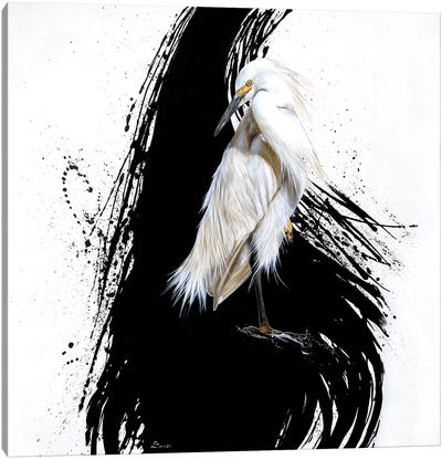 Egret I Canvas Art Print