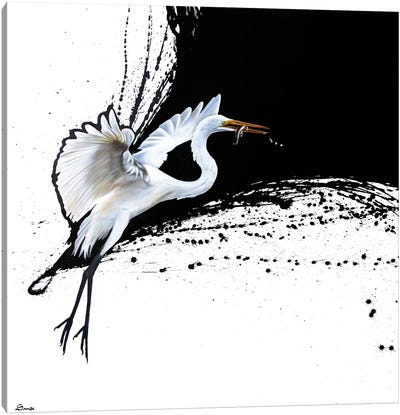 Egret II Canvas Art Print