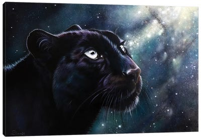 Eternal Canvas Art Print