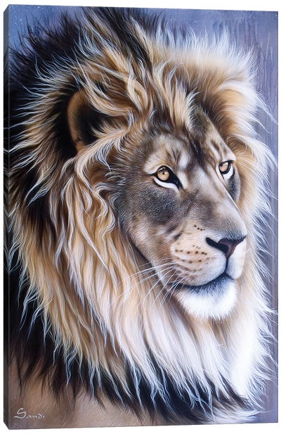 Leo Canvas Art Print