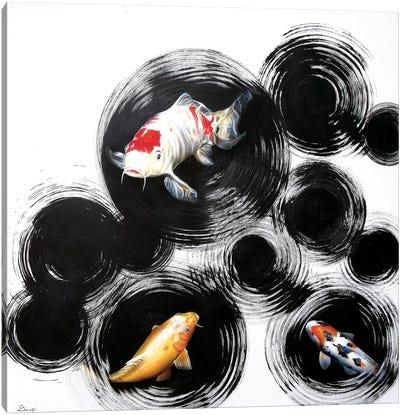 Raindrops Reveal II Canvas Art Print